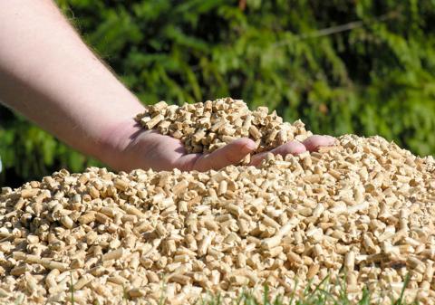 ecosmart fuels wood chip