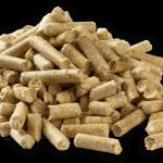 biomass fuel