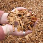 ecosmart fuels wood pellet